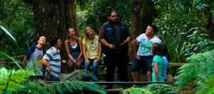 Bay of Islands activities: Hokianga and Tane Mahuta