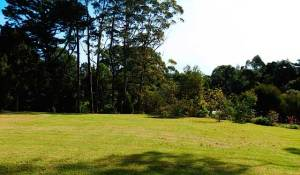 B&B Kerikeri large lawns and park-like grounds